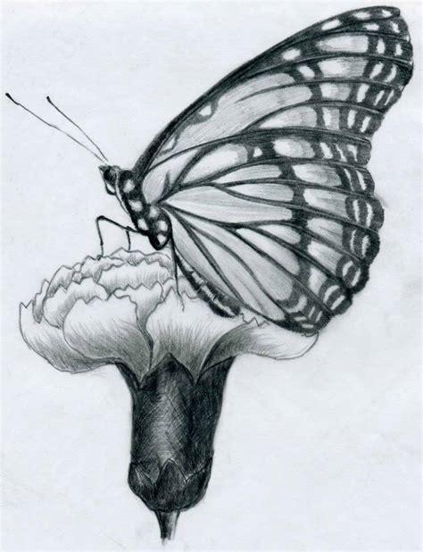 Easy Pencil Drawings Flowers Butterflies