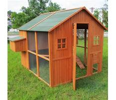 Easy clean chicken coops for sale Video