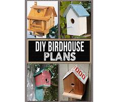 Easy to build bird house plans Video
