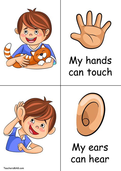 HD wallpapers plant kindergarten worksheets Page 2
