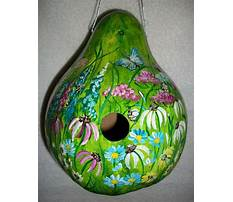 Free gourd birdhouse patterns Video