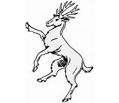 Free line drawing from photos software Video