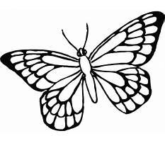 Free line drawings butterflies Video