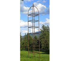 Garden obelisks and plant climbers Video