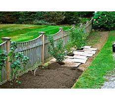 Gardens within garden fencing ideas pictures Video