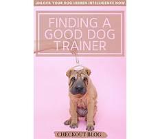 Good dog training tips.aspx Video
