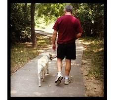 Hampton roads dog training club.aspx Video