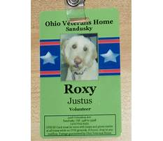 Help train therapy dogs.aspx Video