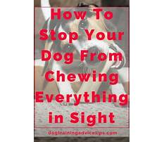 How do you stop a puppy from barking in crate.aspx Video