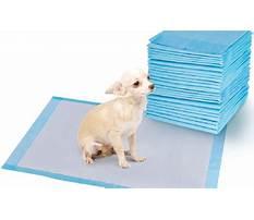 How do you train a dog to use pee pads.aspx Video