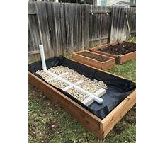 How to build a raised bed garden cheap Video