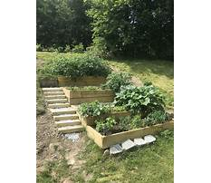 How to build a raised bed garden on a hill Video