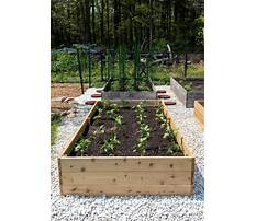 How to build a raised bed garden step by step Video