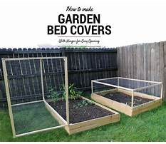 How to build a raised bed garden with cover Video
