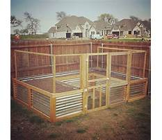 How to build a raised bed garden with screen Video