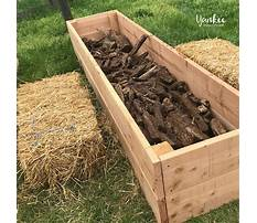 How to build a raised bed garden youtube Video