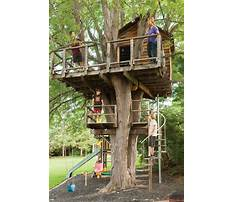 How to build a treehouse for adults Video