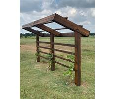 How to build an arbor Video