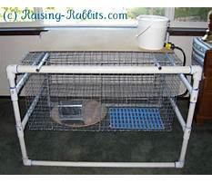 How to build rabbit cages with pvc pipe Video