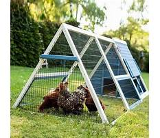 How to make a little chicken house Video