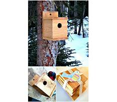 How to make bird houses videos Video