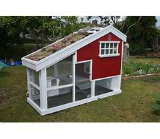 How to make your chicken coop better Video