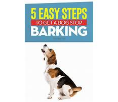 How to stop barking dog Video