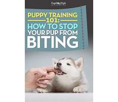How to stop puppy biting me Video