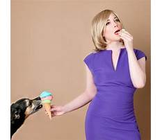 How to train a dog to fetch youtube.aspx Video