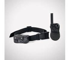 How to train dog to come with shock collar.aspx Video