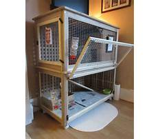 Indoor rabbit enclosure buy Video