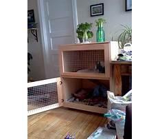 Indoor rabbit enclosure designs Video