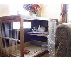 Indoor rabbit enclosure Video