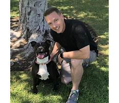 Jonny be good dog training Video