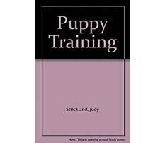 Judy strickland dog training.aspx Video