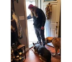 Just say it once dog training Video