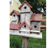 Large wooden bird houses for sale on pole Video