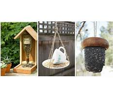 Make it yourself bird feeders Video