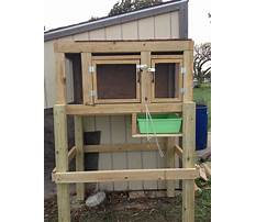 Make your own outdoor rabbit cage Video