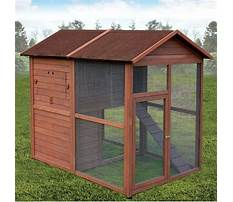 Making a backyard chicken coop Video