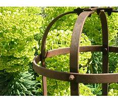 Metal garden plant supports Video