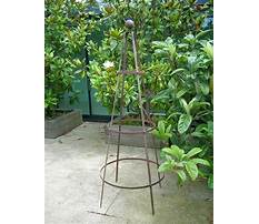Obelisk for garden plants Video