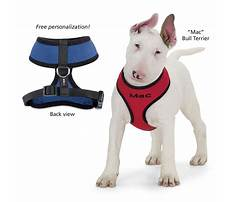 Older dog crate training tips.aspx Video