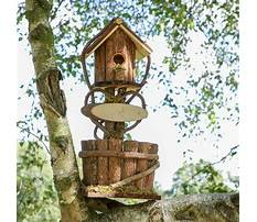 Outdoor bird house planter Video
