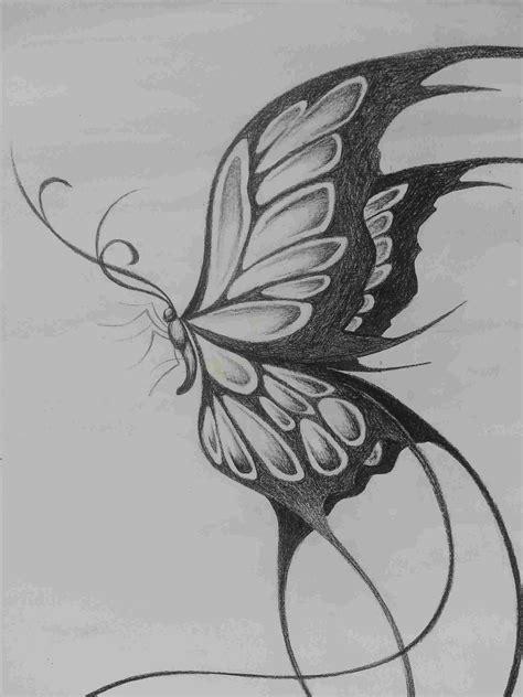 Pencil Drawings Butterflies Art