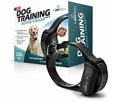 Pettech dog training collar sync instructions.aspx Video