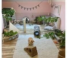 Pinterest indoor rabbit enclosures Video