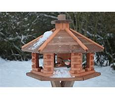 Plans for birdhouses and feeders Video