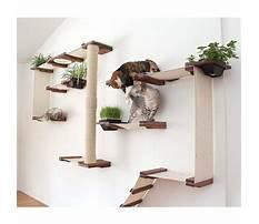 Plans for cat shelves Video