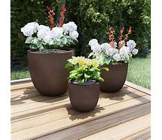 Plant pots outdoor Video